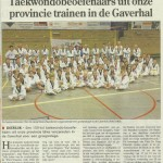 Taekwondo-beoefenaars-trainen-in-de-gaverhal