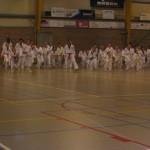 tae-kwon-do-deerlijk-5-2013-011