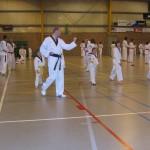 tae-kwon-do-deerlijk-5-2013-013