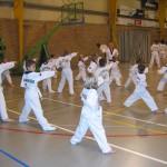 tae-kwon-do-deerlijk-5-2013-017