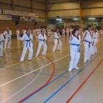 tae-kwon-do-deerlijk-5-2013-025