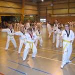 tae-kwon-do-deerlijk-5-2013-028