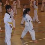 tae-kwon-do-deerlijk-5-2013-036