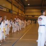 tae-kwon-do-deerlijk-5-2013-042