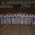tae-kwon-do-deerlijk-5-2013-048