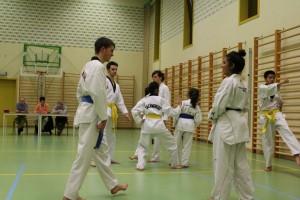 Sfeerfoto 1 examen taekwondo november 2014