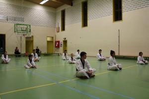 Sfeerfoto 2 examen taekwondo november 2014